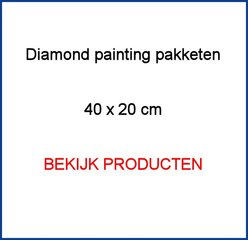 Diamond Painting pakketten 40x20cm