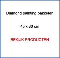 Diamond Painting pakketten 45x30cm