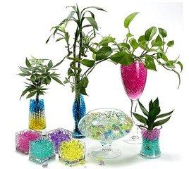 Watergelparels